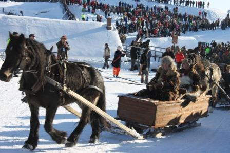 101214-horse-sleigh-in-roros