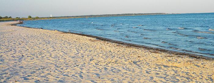 250714_Skanor-beach_skane