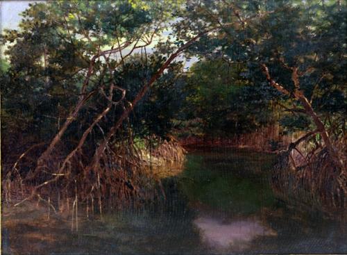 021214-bror-anders-wickstrom-mangrove-swamp