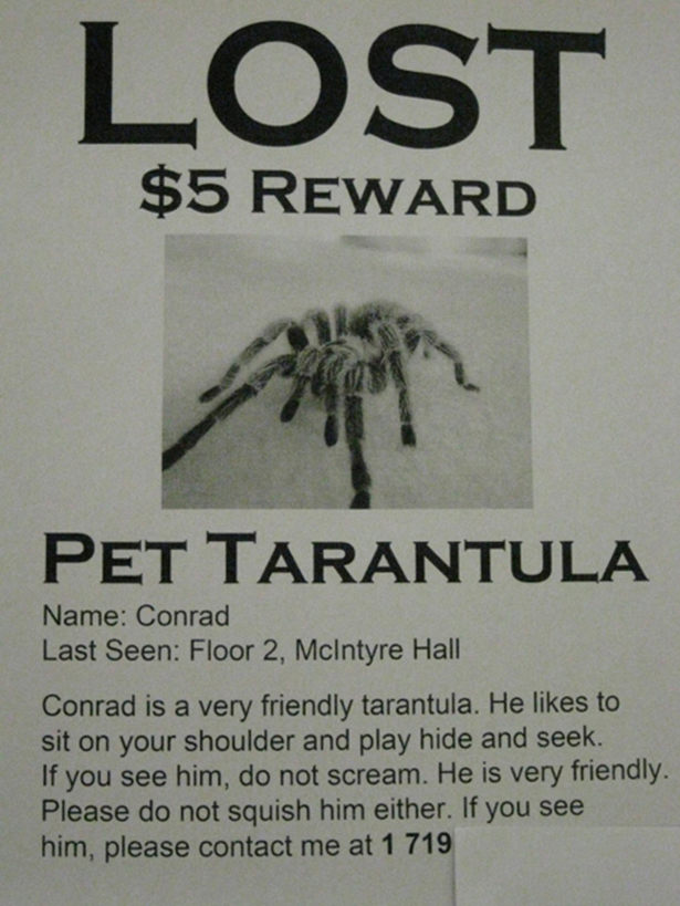 200115-Funny-Lost-Pet-Sign