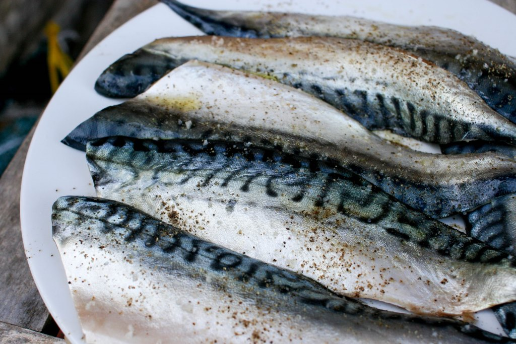 mackerel Mackerel is a beautiful oily fish, both for its iridescent, striking skin and its rich, fishy flavour respected by chefs and home cooks alike, mackerel has a distinctive flavour, it looks stunning on the plate and is a great source of brain-boosting omega-3 fatty acids.