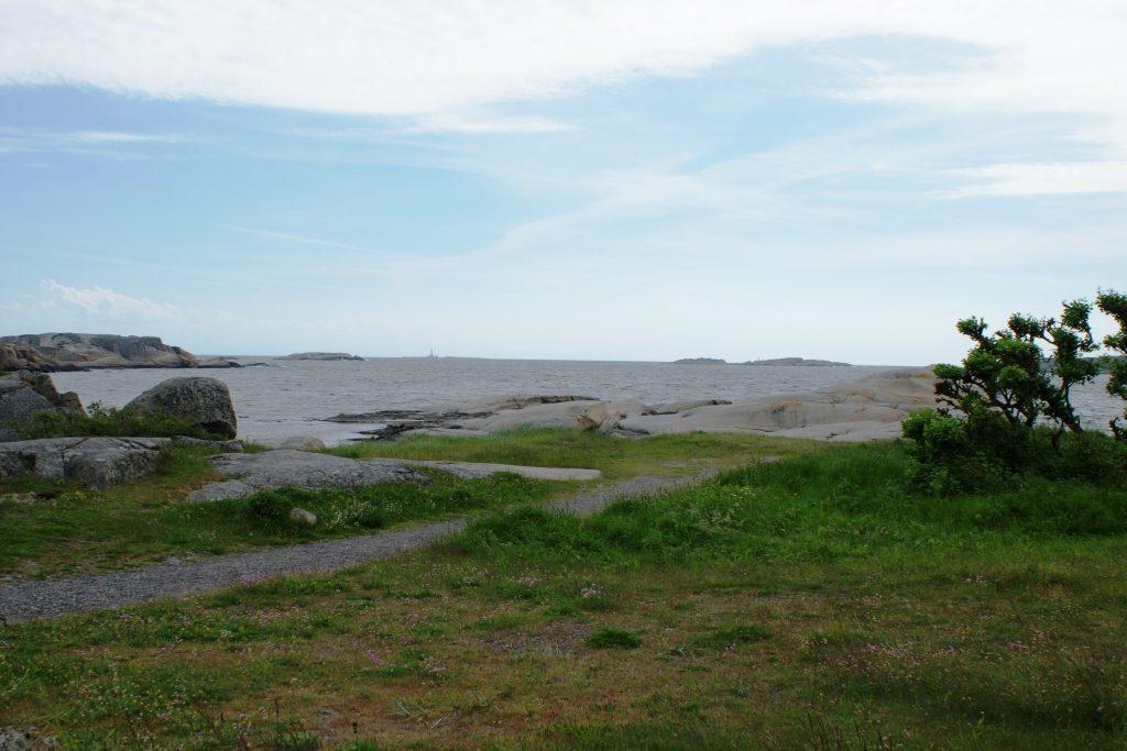 The Norwegian Asparagus Island