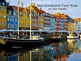 Prestigious Award to Daily Scandinavian