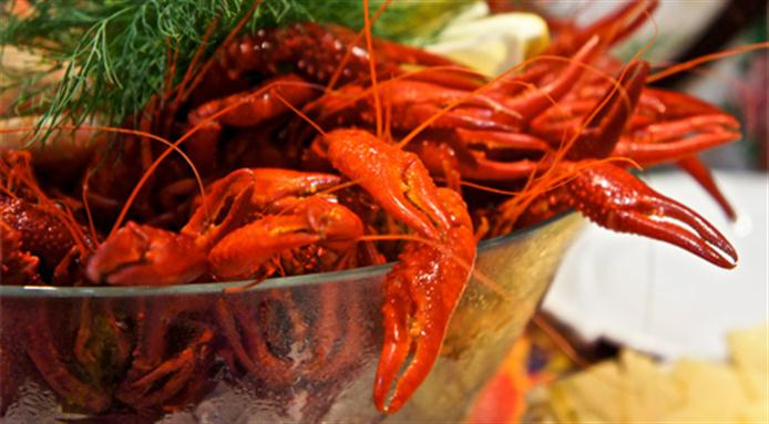 Scandinavian crayfish