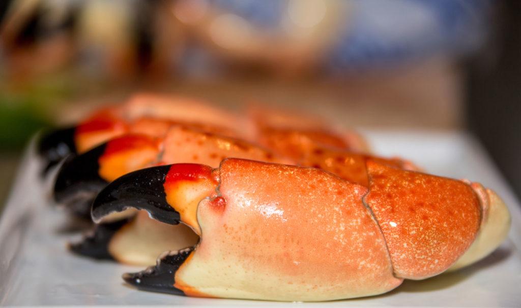 Scandinavian Common Crab