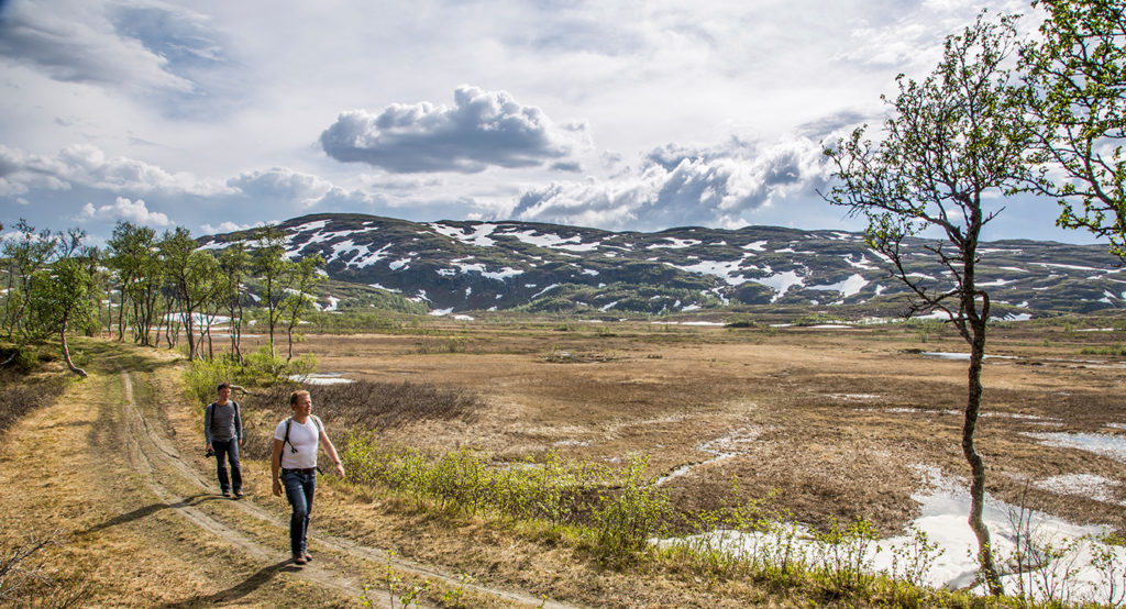 The Best Hiking Trails in Sweden