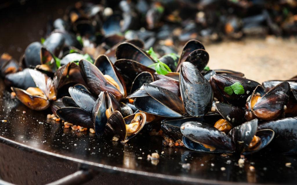 Scandinavian Mussel