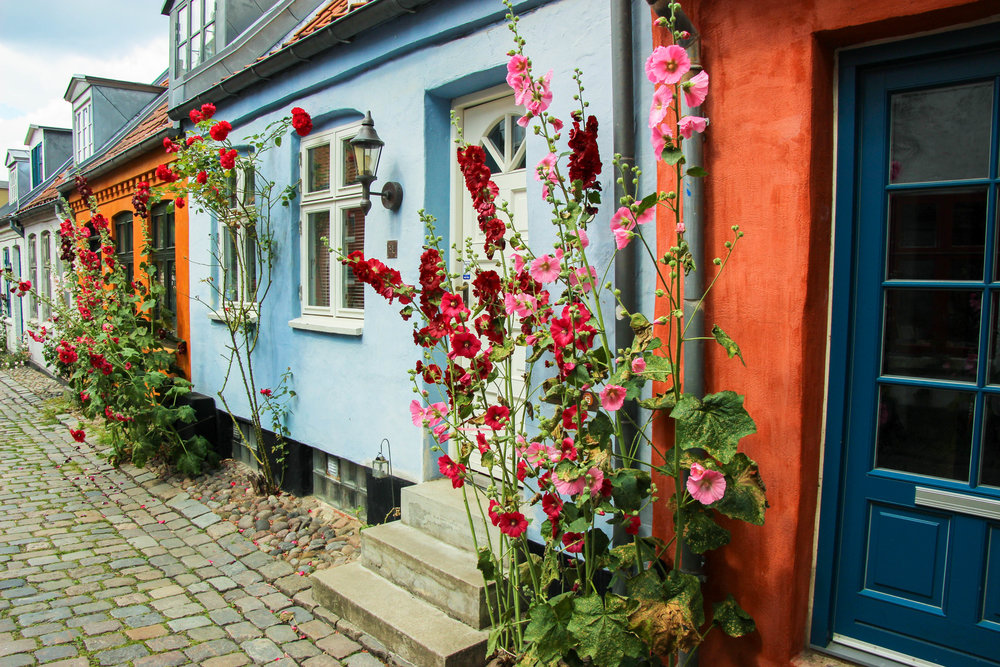 Discover the Danish Region of Gastronomy