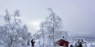 A Love Letter to Norway's Winter Wonderland