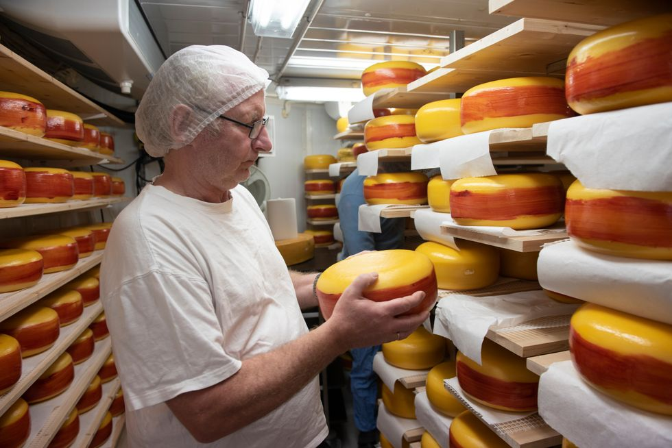 Norway - World's Best Cheese-maker
