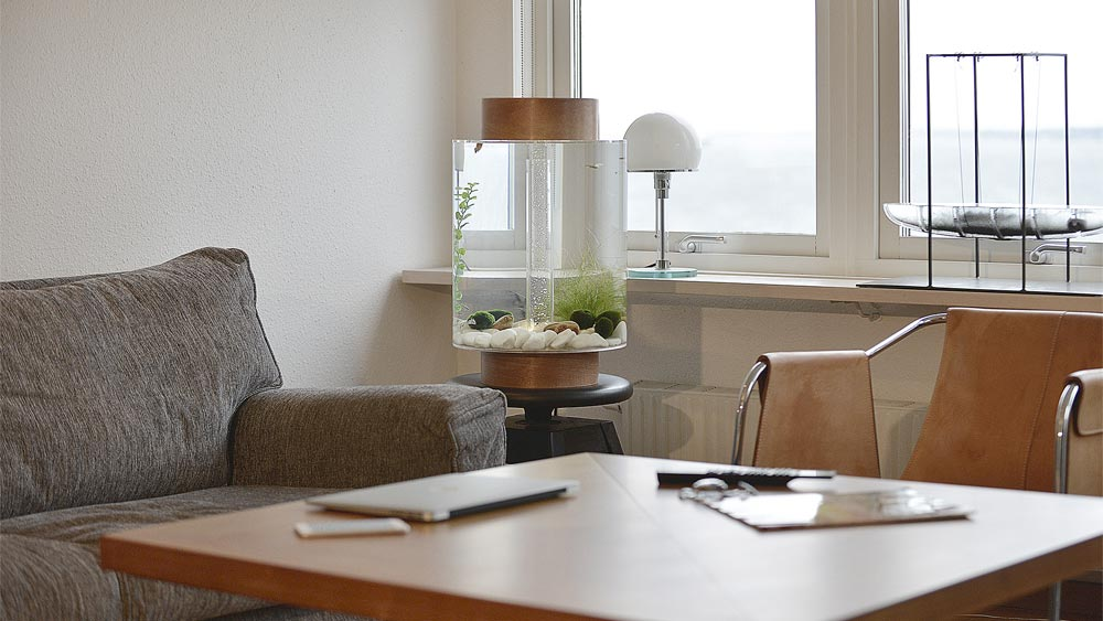 Practical Swedish Aquarium for Small Homes