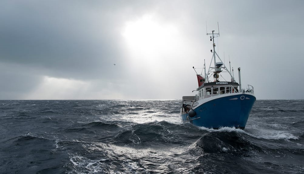 Norwegian Deepwater Prawns