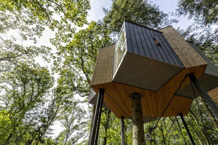 Treetop Hotel in Denmark