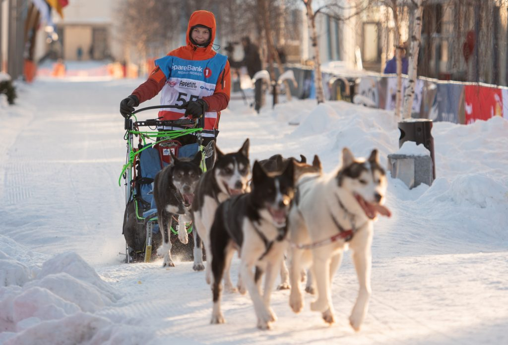 The Longest Dog Sled Race in Europe Takes Place in Norway