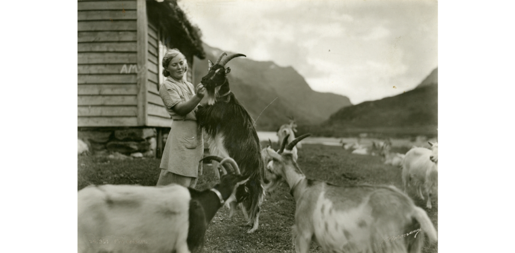 The Best of Postcards from Norway