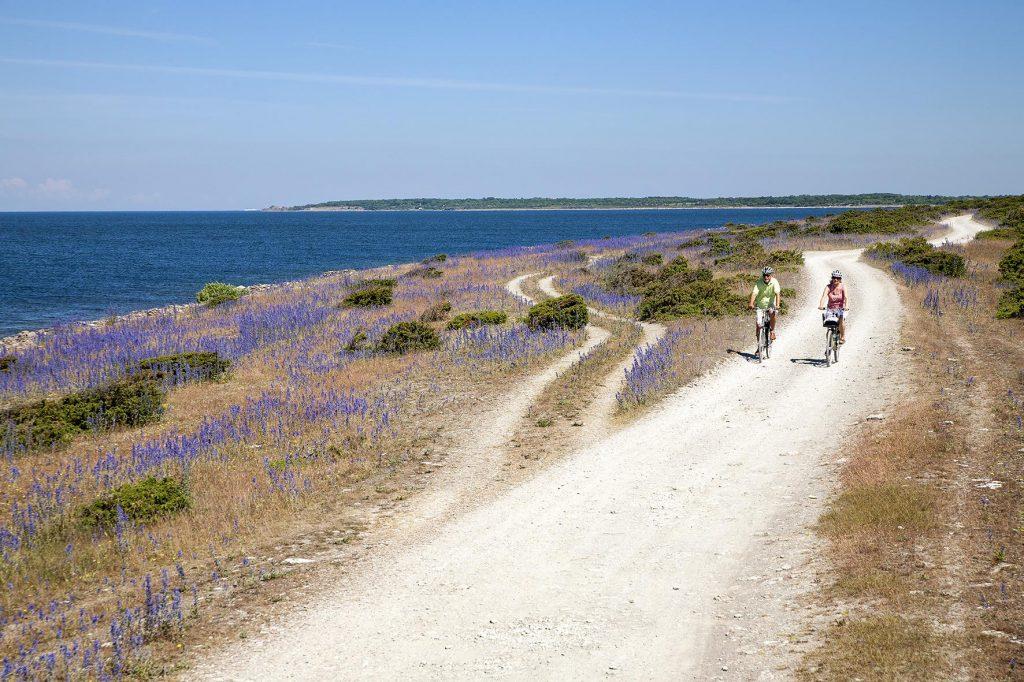 Один из самых посещаемых районов Швеции Одна из самых посещаемых областей Швеции Одна из самых посещаемых областей Швеции 050520 Cykel Oland Miriam Eriksson Visit Sweden 1024x682