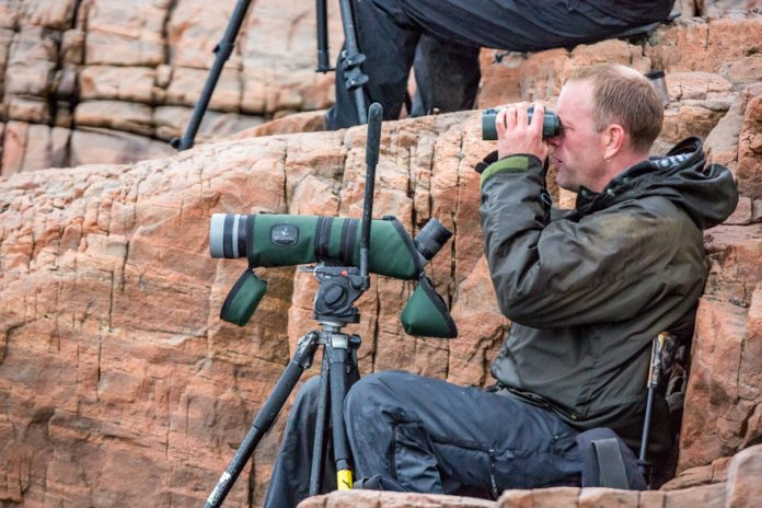 A Natural Born Birder in Norway