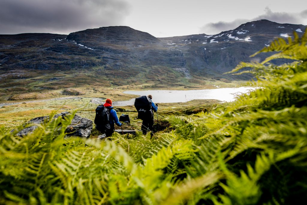 The Two Greenest Countries in Europe 2020 are Scandinavian