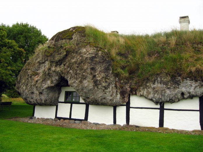 Danish Thatch For The Future