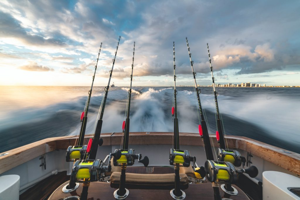 Improve Your Fishing With Swedish App