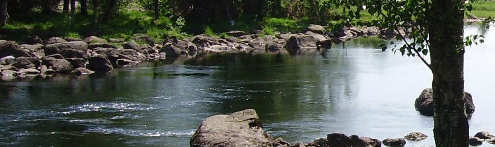 Bjerkreim river.