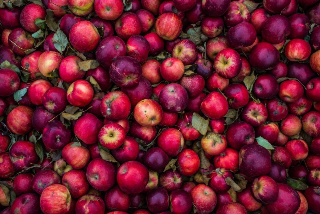 Fall Foods in Scandinavia for Healthy Autumn
